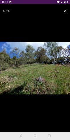 Vendo terreno a 7 kilomentro do centro de Santa Leopoldina fica e em Bragança - Foto 4