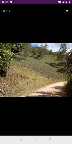 Vendo terreno a 7 kilomentro do centro de Santa Leopoldina fica e em Bragança - Foto 15