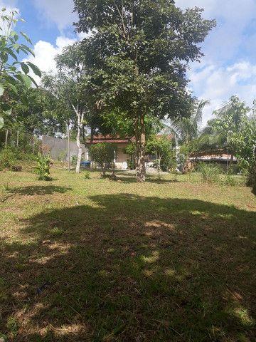Vende se chácara no Maranhão  - Foto 5