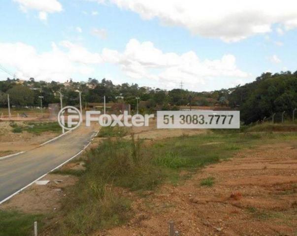 Loteamento/condomínio à venda em Morro santana, Porto alegre cod:160027 - Foto 3