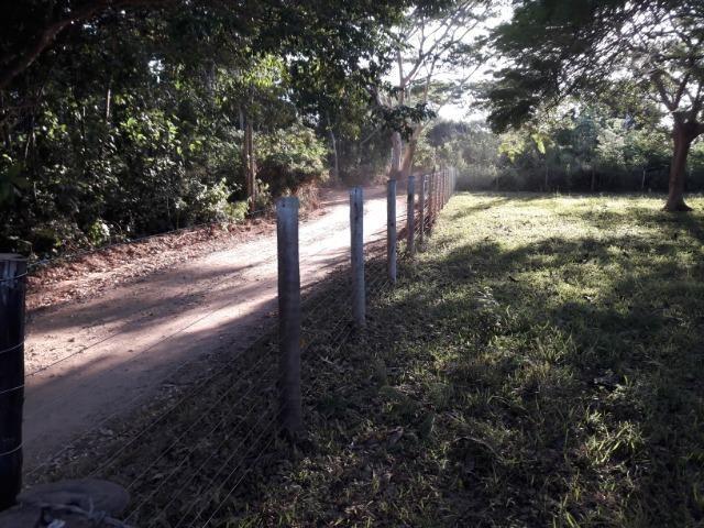 Vende-se uma chácara na beira do rio Cuiabá - Foto 2