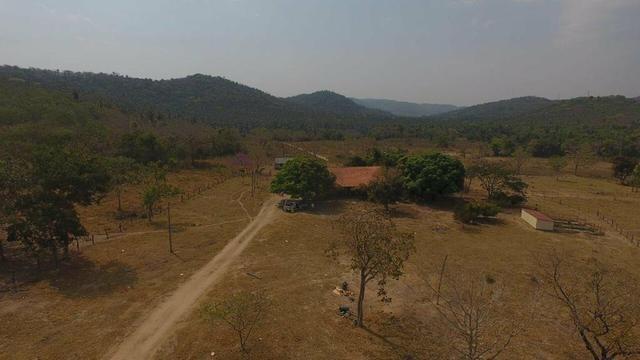 Fazenda região de São Vicente - Foto 5