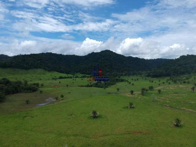 Fazenda à venda, por R$ 11.594.000 - Alta Floresta D'Oeste/RO - Foto 17