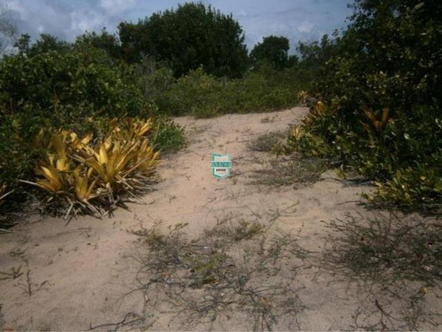 Itacaré. Fazenda de frente para o mar com 100 Hectares - Foto 13