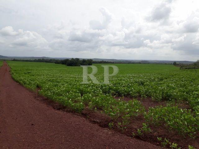 Fazenda 2006 Hectares em Tocantis - Foto 6