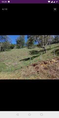 Vendo terreno a 7 kilomentro do centro de Santa Leopoldina fica e em Bragança - Foto 11