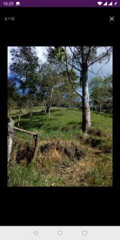 Vendo terreno a 7 kilomentro do centro de Santa Leopoldina fica e em Bragança - Foto 8
