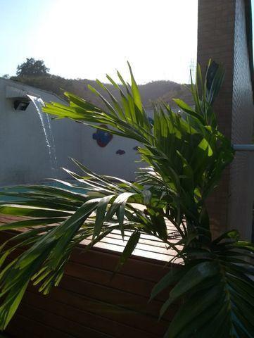 Vendo Cobertura 3 quartos em Santa Rosa com piscina - - Foto 3