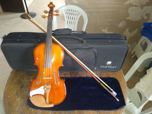 Violino - Foto 6