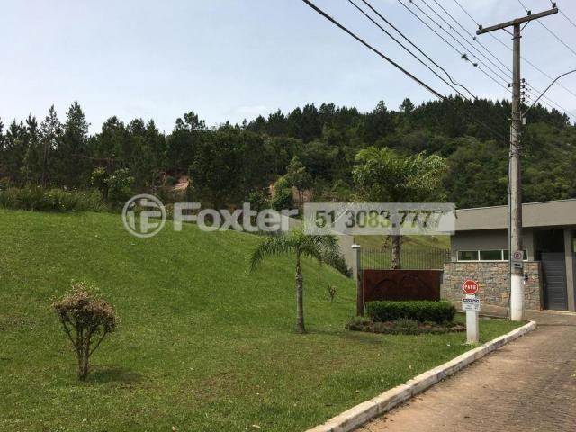 Terreno à venda em Campo novo, Porto alegre cod:164602 - Foto 6