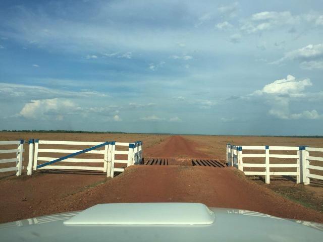 Arrendo 2.500 hectares prontos para plantio.