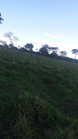 Fazenda de 114 alqueires - Aparecida do Taboado-MS-F090219