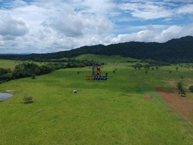 Fazenda à venda, por R$ 11.594.000 - Alta Floresta D'Oeste/RO - Foto 15