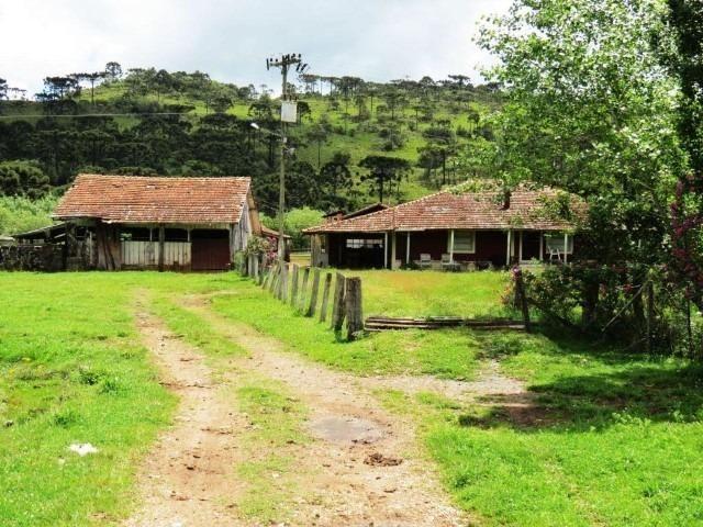 Sitio em Urubici/ área rural /chácara fazenda em Urubici 223.460 m² - Foto 9