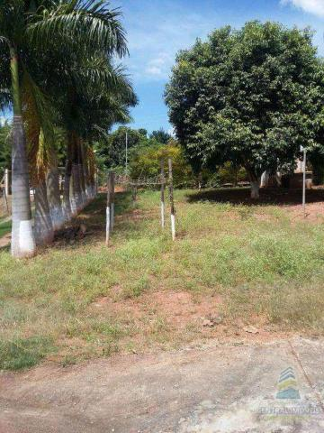 Chácara à venda com 2 dormitórios em Centro, Alfenas cod:4034 - Foto 2