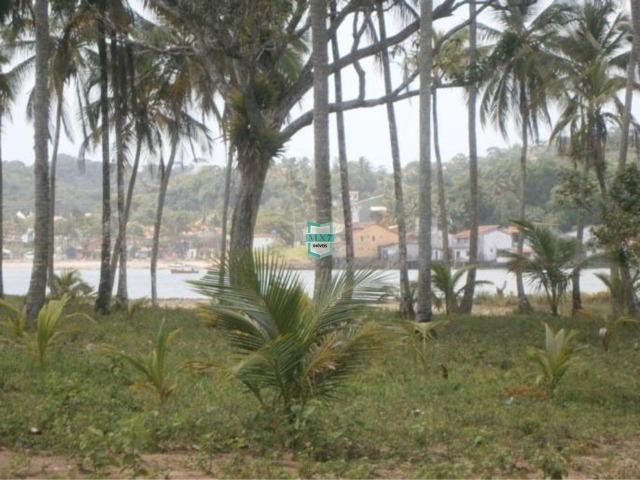 Itacaré. Fazenda de frente para o mar com 100 Hectares - Foto 2