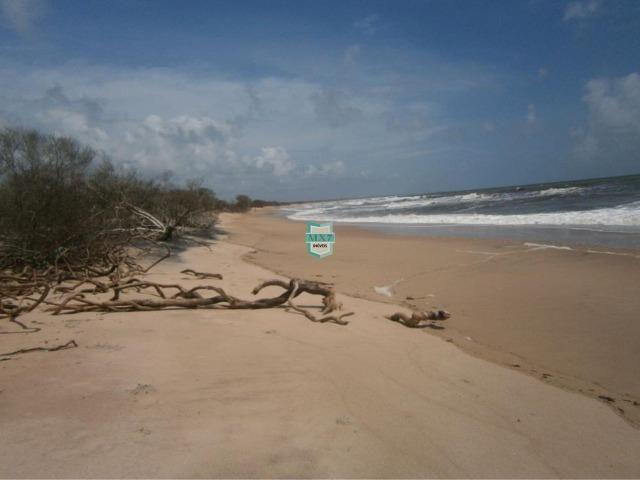 Itacaré. Fazenda de frente para o mar com 100 Hectares - Foto 7
