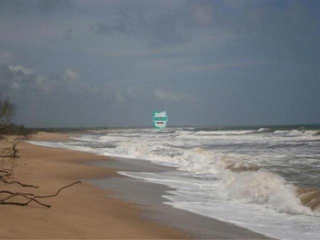 Itacaré. Fazenda de frente para o mar com 100 Hectares - Foto 8