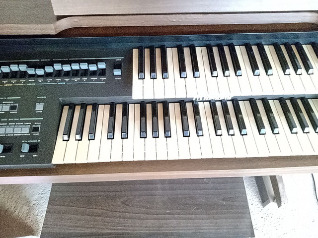 Órgão Minami - Foto 2