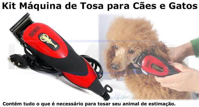 Kit Maquina Tosa Profissional Cães Gatos - Foto 5