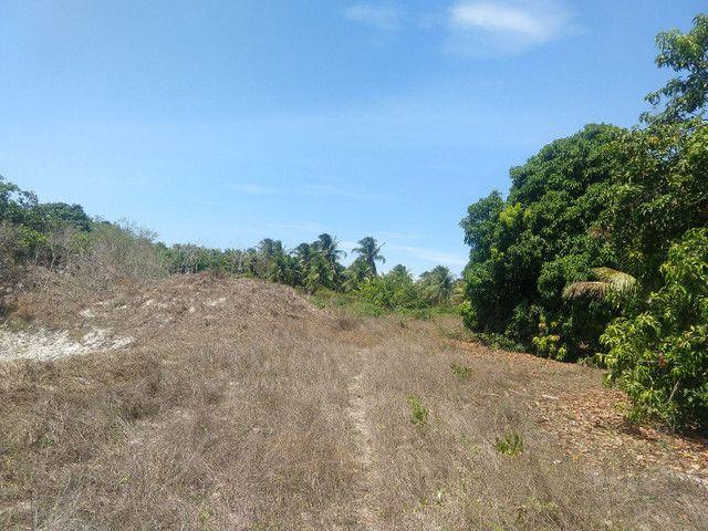 Vende-se tereno na segunda etapa - Foto 4