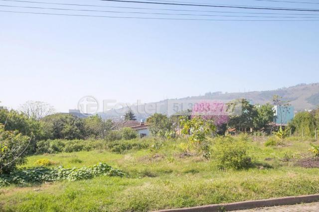 Terreno à venda em Morro santana, Porto alegre cod:112177 - Foto 3