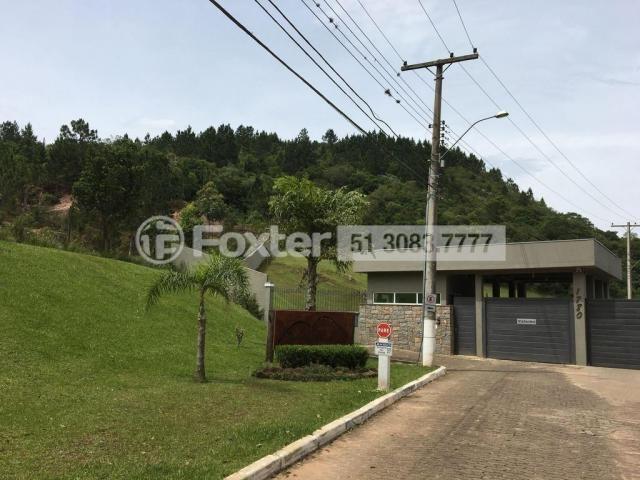 Terreno à venda em Campo novo, Porto alegre cod:164602 - Foto 5