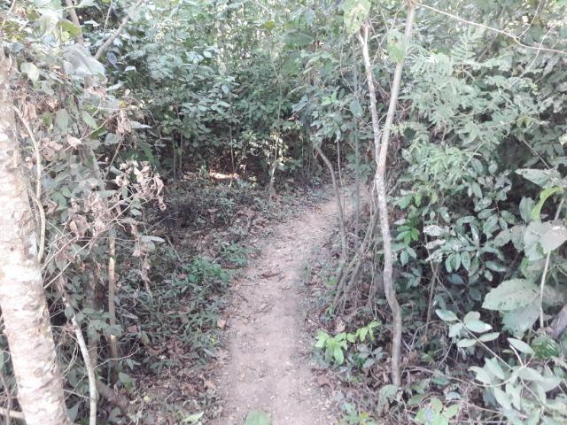 Vende-se uma chácara na beira do rio Cuiabá - Foto 4