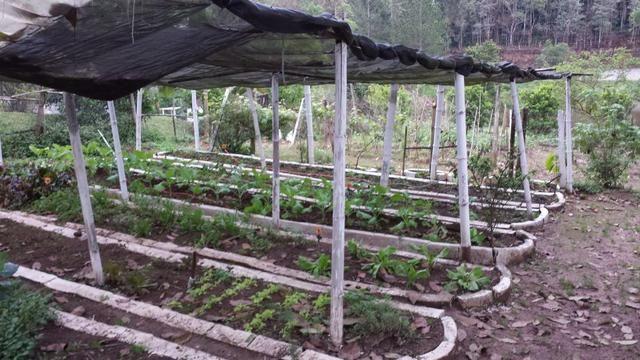 Vendo e alugo chacara em embu guaçu - Foto 10