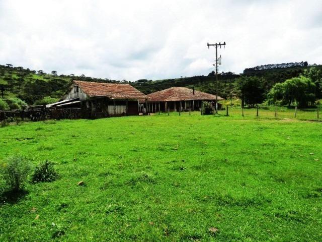 Sitio em Urubici/ área rural /chácara fazenda em Urubici 223.460 m² - Foto 5