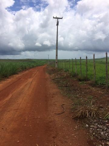 Fazenda-Granja-Sítio com 21 Hectares em Aliança - Foto 14