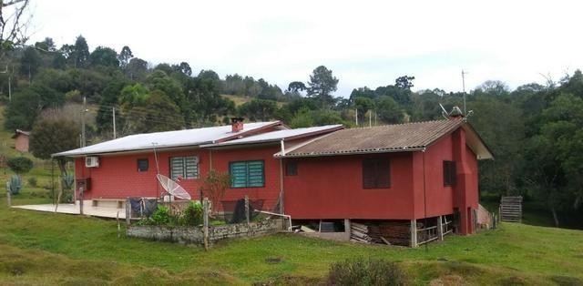 Chácara 3,0 Ha Campestre da Serra - Foto 9