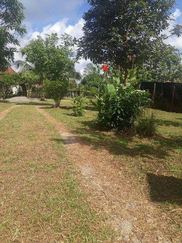 Vende se chácara no Maranhão  - Foto 3