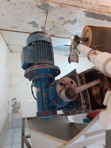 Máquina de descascar camarão - Foto 6
