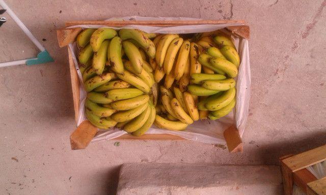 Bananas direto da chacara ,sem agrotóxicos - Foto 2