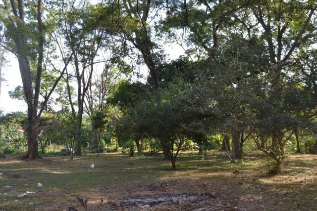 Chácara á venda (4 lotes): 9.729,72 m². Cidade Vera Cruz, Aparecida de Goiânia-GO - Foto 20