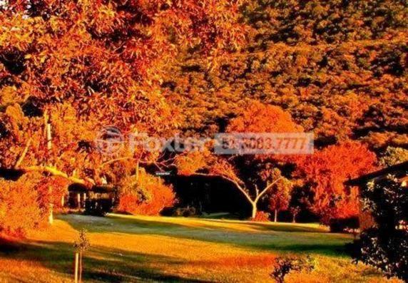 Sítio à venda em Parque do sol, Osório cod:132027 - Foto 18