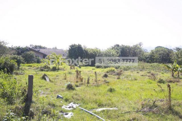 Terreno à venda em Morro santana, Porto alegre cod:112177 - Foto 2