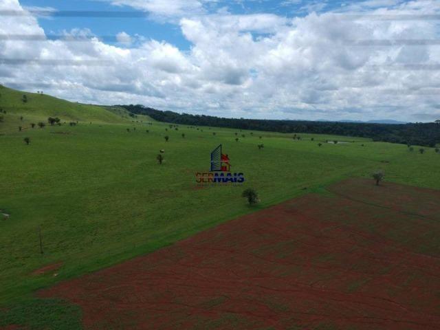 Fazenda à venda, por R$ 11.594.000 - Alta Floresta D'Oeste/RO - Foto 5