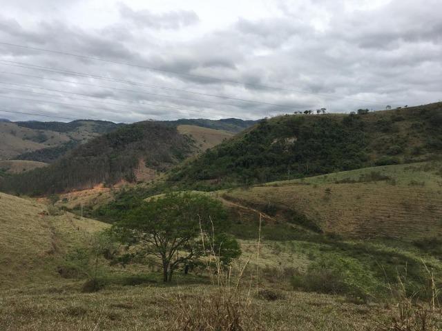 Venda-se está fazenda de 250 alqueires no Município de Fervedouro/MG - Foto 7