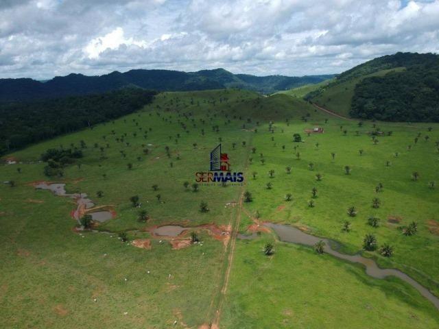 Fazenda à venda, por R$ 11.594.000 - Alta Floresta D'Oeste/RO - Foto 8