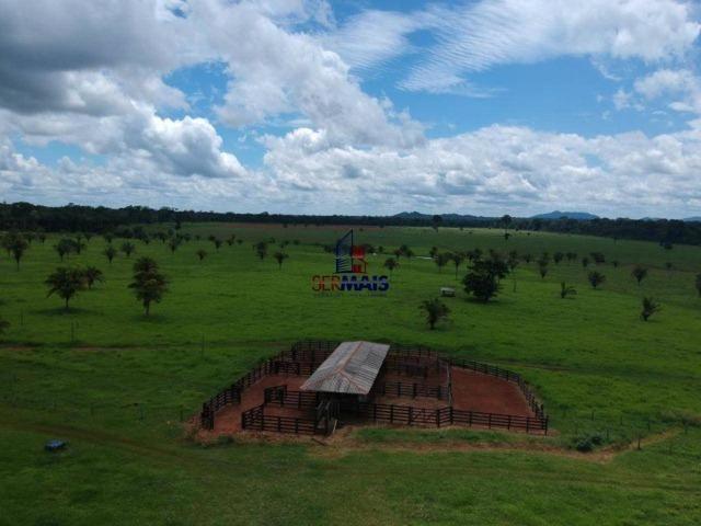 Fazenda à venda, por R$ 11.594.000 - Alta Floresta D'Oeste/RO