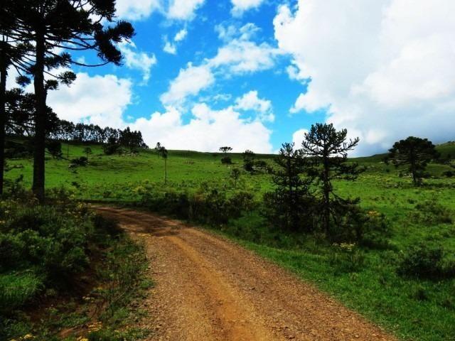 Sitio em Urubici/ área rural /chácara fazenda em Urubici 223.460 m² - Foto 3