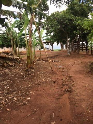Fazenda-Granja-Sítio com 21 Hectares em Aliança - Foto 16