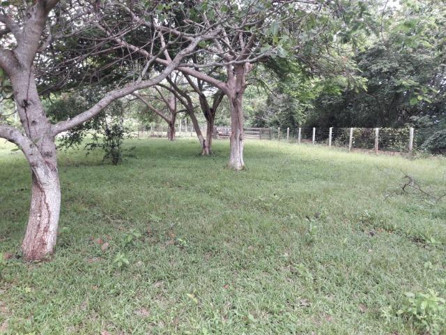 Vende-se uma chácara na beira do rio Cuiabá - Foto 11