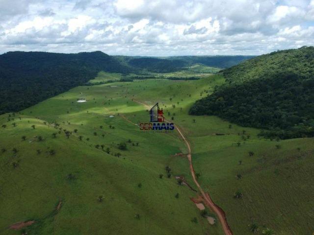 Fazenda à venda, por R$ 11.594.000 - Alta Floresta D'Oeste/RO - Foto 3