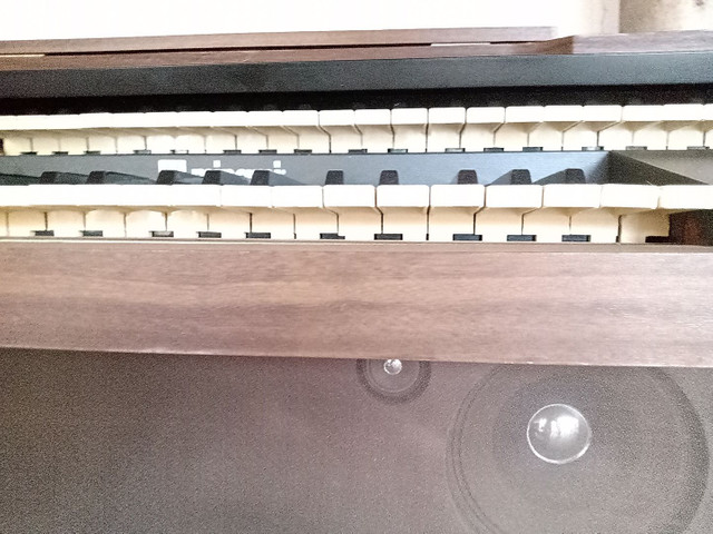 Órgão Minami - Foto 6