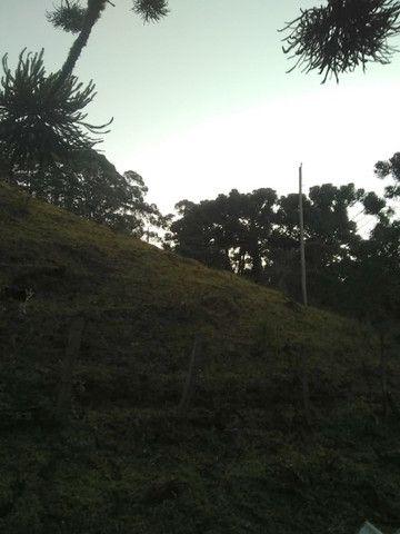 Fantástico Sítio Com 8 Alqueires, Em Delfim Moreira-Mg - Foto 3