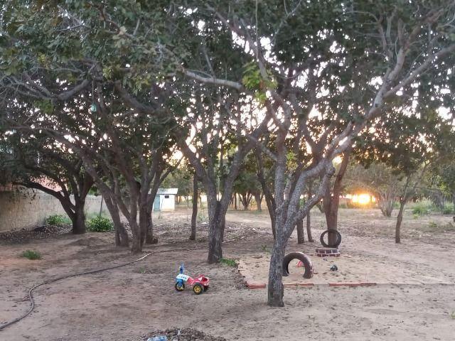 Chácara na Beira do Lago! 14 km de Palmas! Praia de Águas Cristalinas! - Foto 14