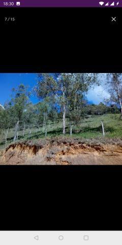 Vendo terreno a 7 kilomentro do centro de Santa Leopoldina fica e em Bragança - Foto 13